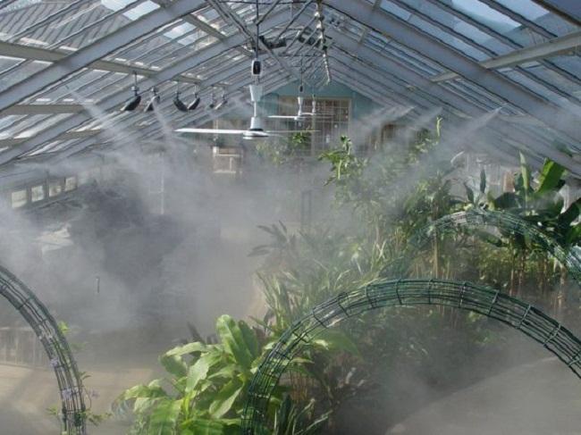 lắp đặt phun sương tưới lan