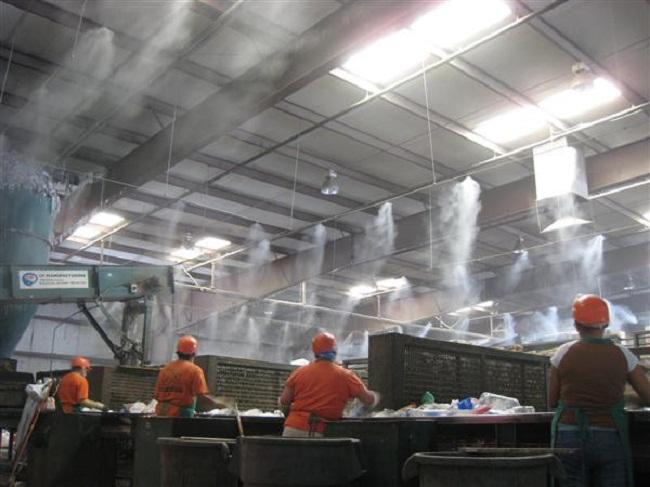 lắp đặt phun sương khử mùi