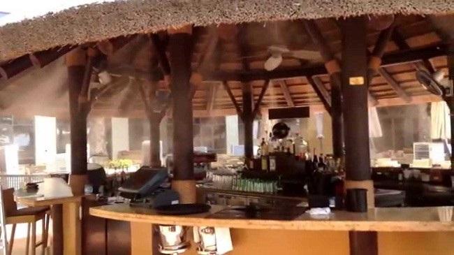 Máy phun sương tạo ẩm nhà hàng quán cafe